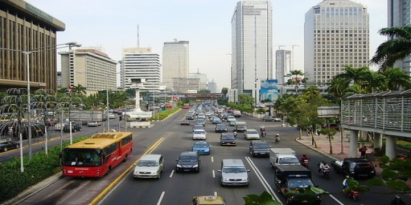 NEW DEVELOPMENT PATHWAY FOR INDONESIA