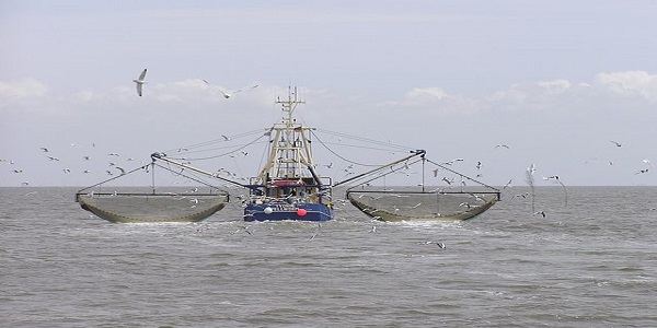 INDONESIA-SUSTAINABLE FISHERIES: A LEGACY TO FUTURE GENERATIONS