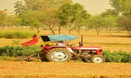 INDIA-WHY FARMS OF EVERY TYPE AND SIZE HAVE TO BE CLIMATE SMART