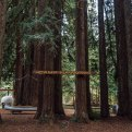 What to Do in Mendocino County California Coast
