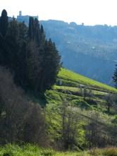 tuscan 5