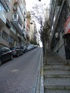And you know the street is steep when the sidewalk is stairs.