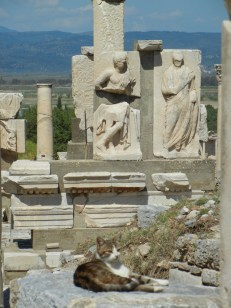 I thought that Ephesus in general was displayed a little hap-hazardly but there were a fw very nice arrangements of fragments.