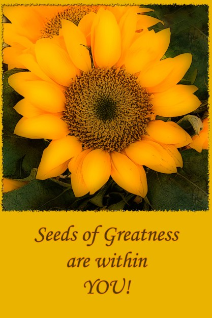 seeds of greatness all layers yellow