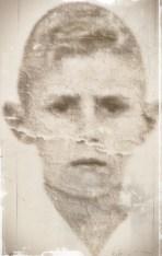 Augusto 7