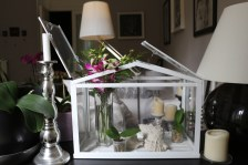 A beautiful miniature glass box like a house is beautifully decorated with orchids, mini potted plants...