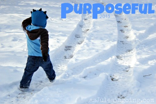purposeful 2013