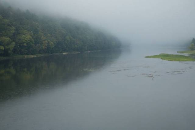 Scenic view of Allegheny river showing weedy cover