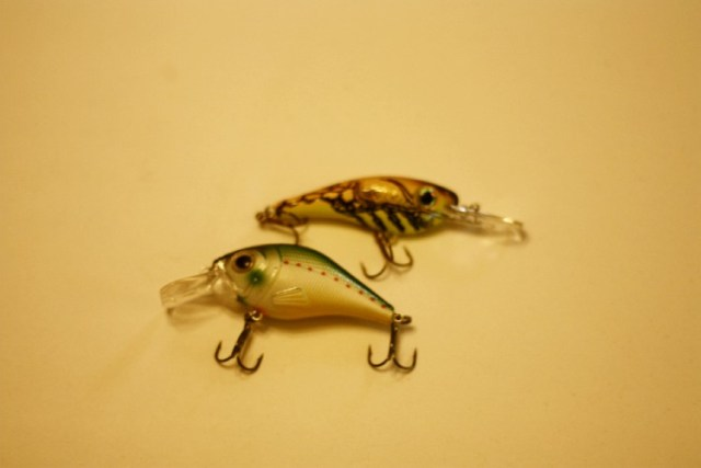 Typical crankbaits for bass fishing