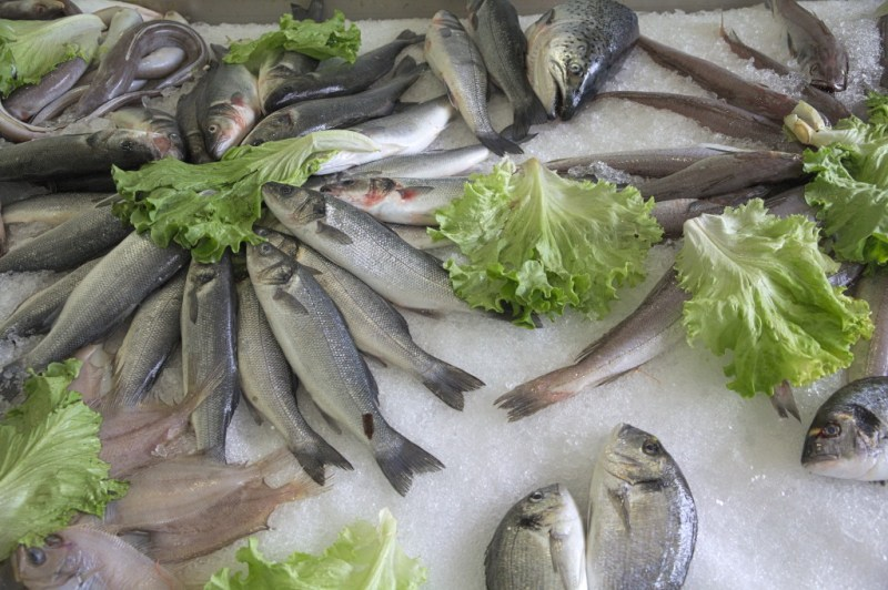 Fish with salad leaves