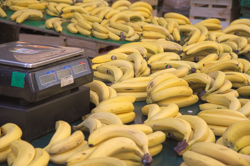 The banana specialist