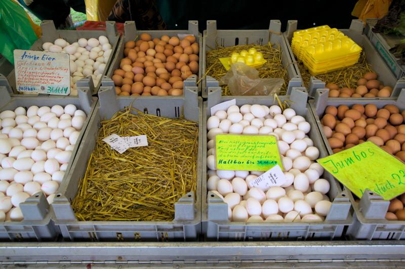 Eggs & eggs
