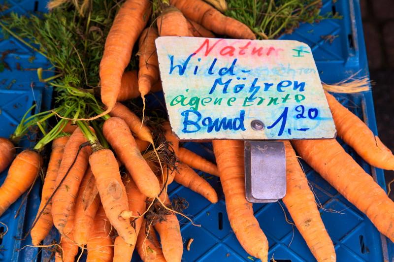 """""""Wild"""" carrots"""