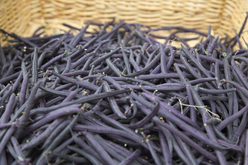 Purple beans - turn green when cooked