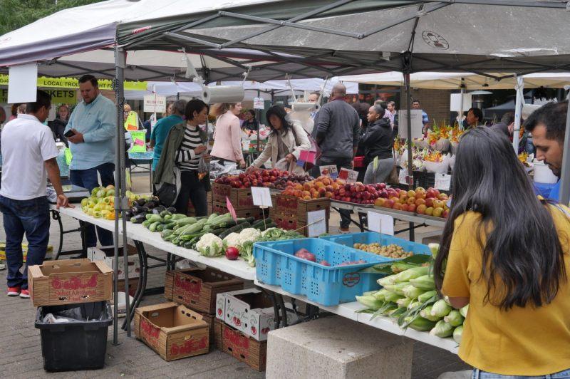 South Lake Union Market Seattle