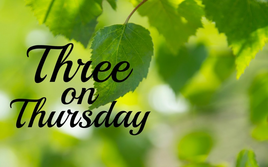 Three on Thursday | 5.30.19