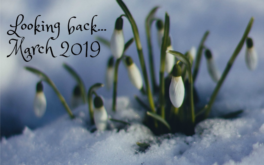 Looking Back | March 2019