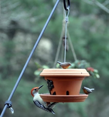 Hang Your Bird Feeder With Forney Wire Rope