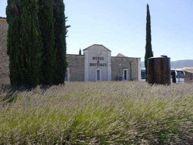 музей лаванды Прованс