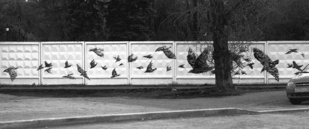 Татьяна Комова – «Ворона»