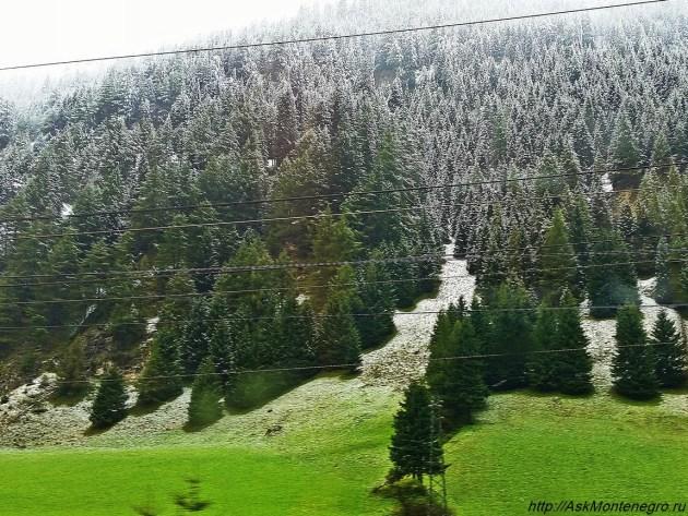 Тироль Австрия