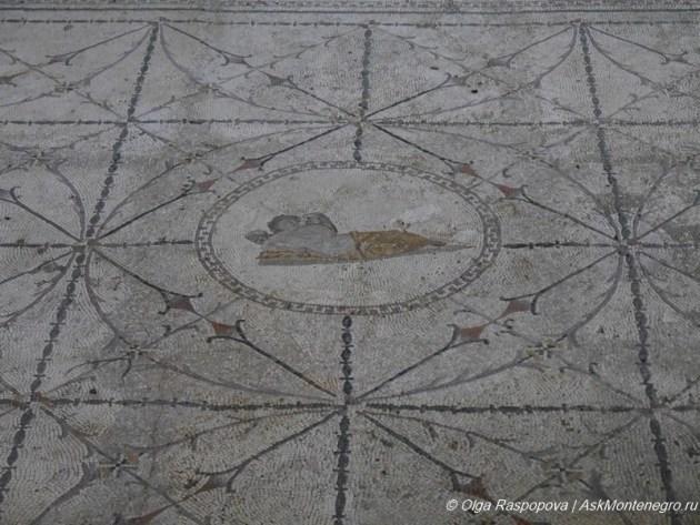 Римские мозаики в Рисане. Изображение Гипноса