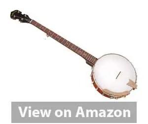Best Banjo: Gold Tone CC-100+ Banjo Review