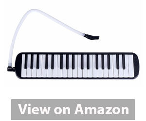 Best Melodica - Mugig Melodica 37 Key Piano Style Melodica Review