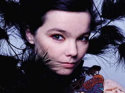 Bjork -- Venus in Capricorn