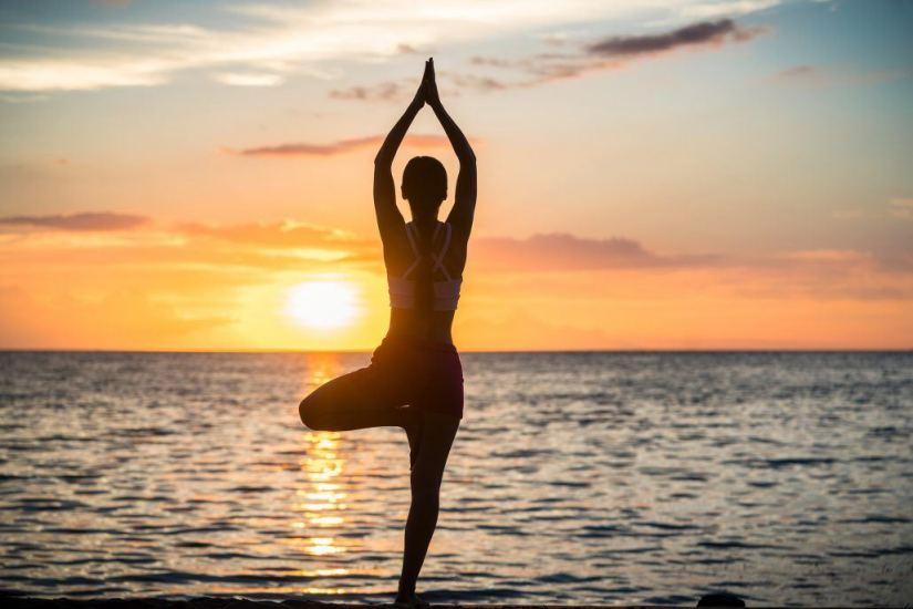 holistic health and wellness