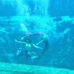 Road Trip Day 2: Weeki Wachee Springs