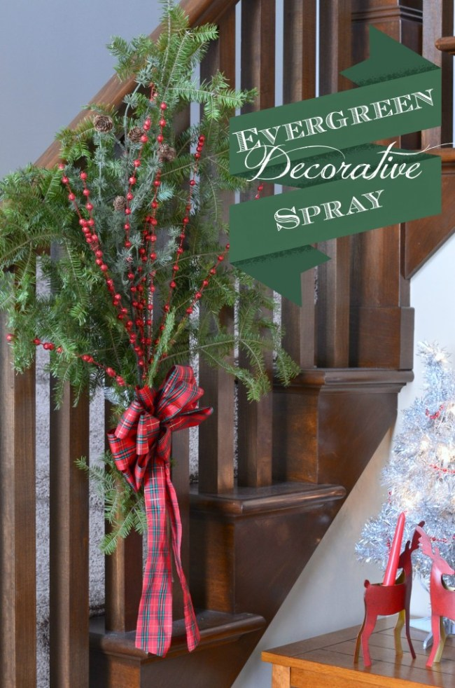 Evergreen Spray