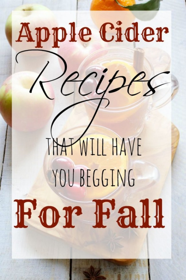 Apple cider recipes for fall