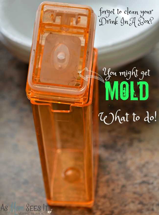 What to do when you get mold in your reusable Drink In A Box