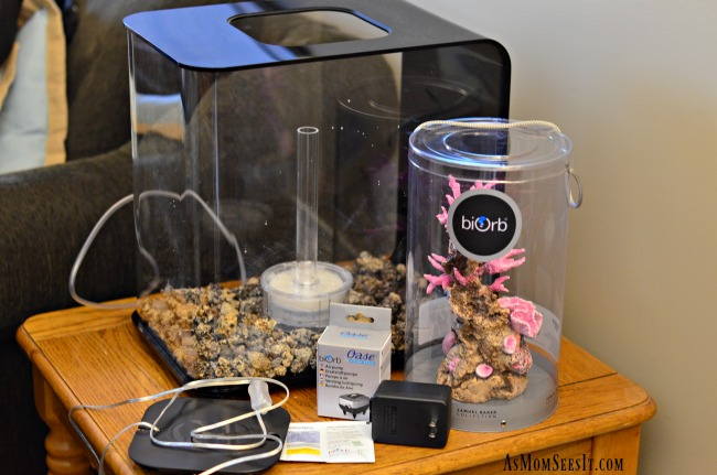 The BiOrb FLOW 30 with LED light is low maintenance and easy to set up