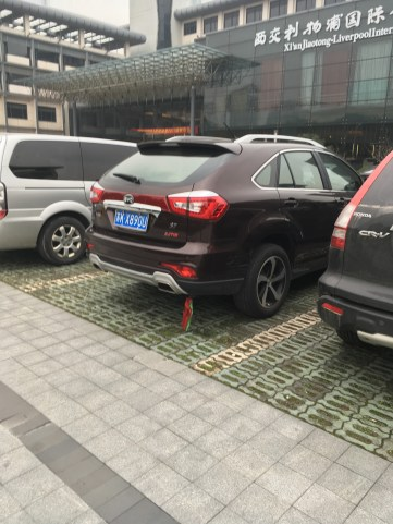 Ribbons on the back of a Chinese car.