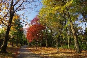 greenpark3