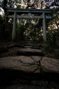 oshima-02-03