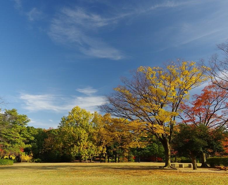 福井県グリーンセンター