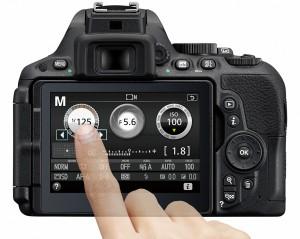 Nikon D5500公式より info設定例