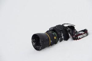 PENTAX K-S2/smcPENTAX-DA*55mmF1.4SDM