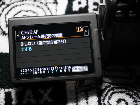 P9830035