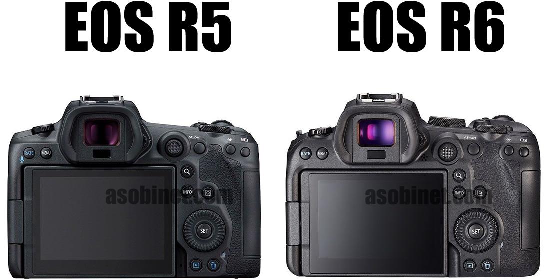 EOS R6とR5の比較