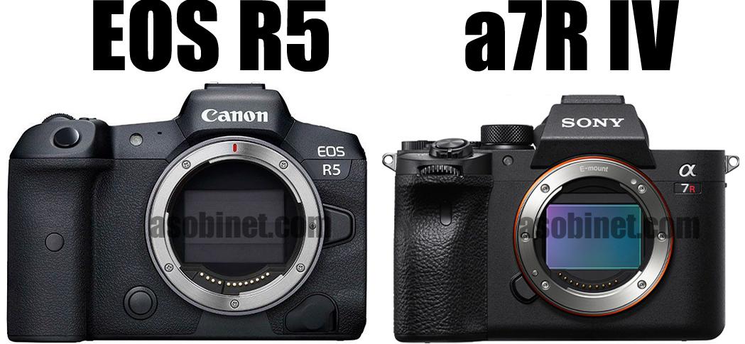 EOS R5とα7R IVの比較