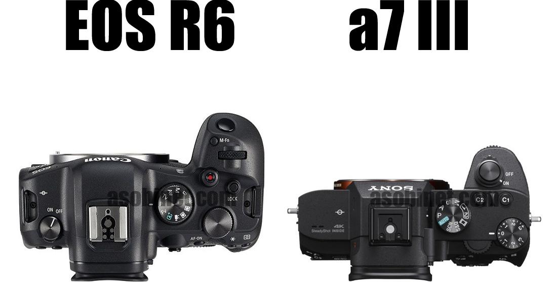 EOS R5とα7 IIの比較