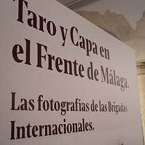 expo taro 4