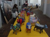 Exposición MiniVacas - 05