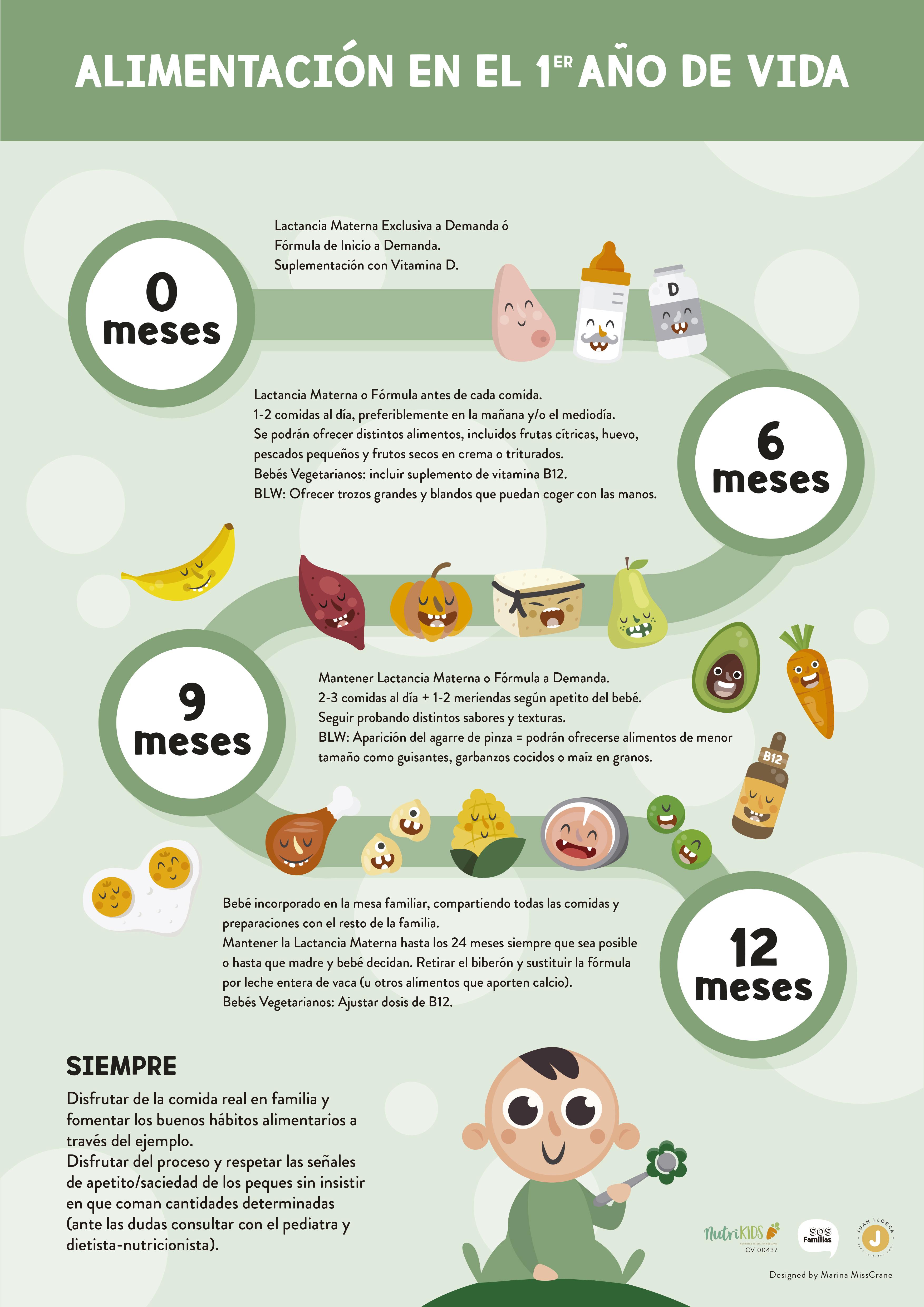 Infografía sobre la línea temporal para la introducción de la alimentación complementaria en bebés de hasta 1 año