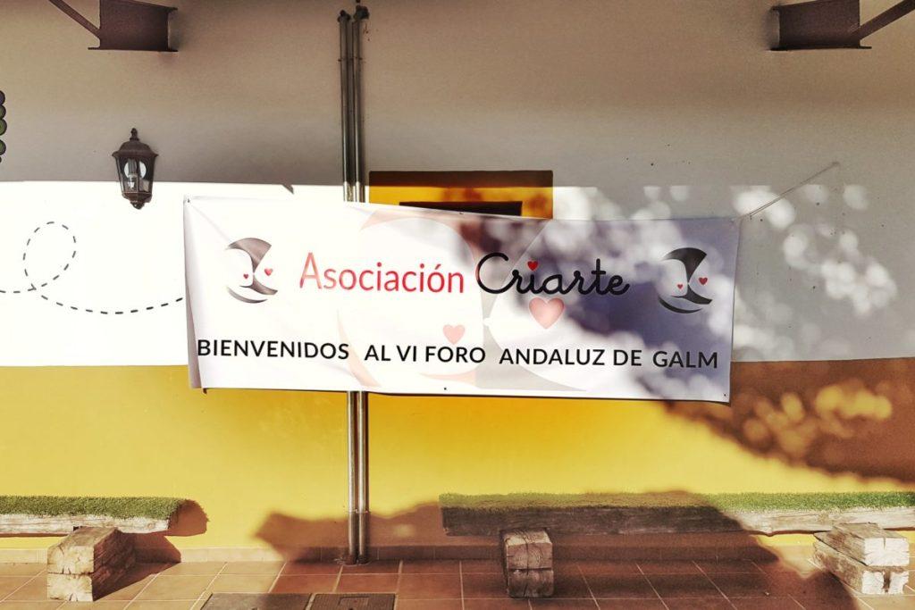 Banner de Criarte para el VI Foro Andaluz de Galms