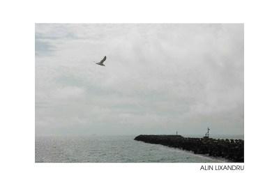 Alin Lixandru